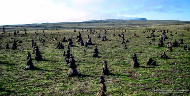 Steinfeld in der Nähe von Þingvellir